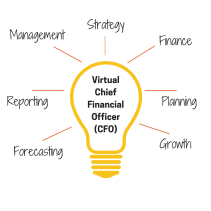 VirtualChief Financial Officer(CFO)