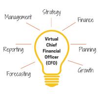 VirtualChief Financial Officer(CFO)